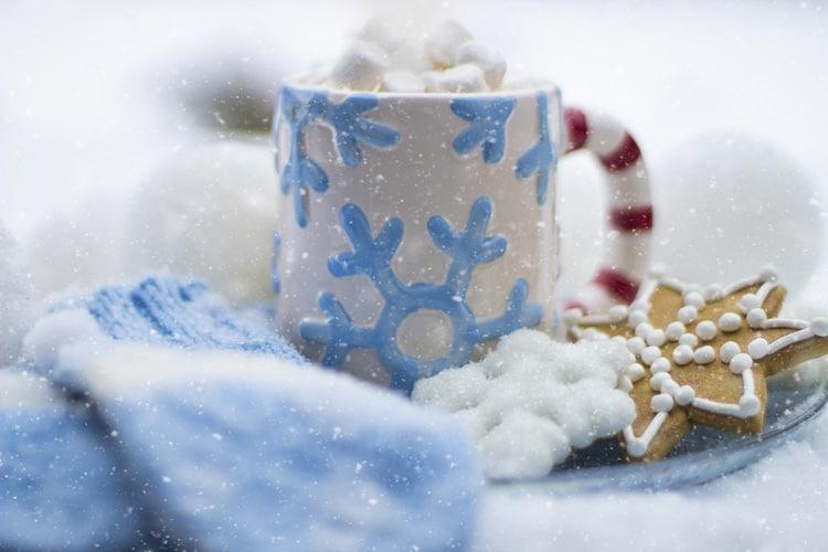 Beobachtungen einer Schneeflocke