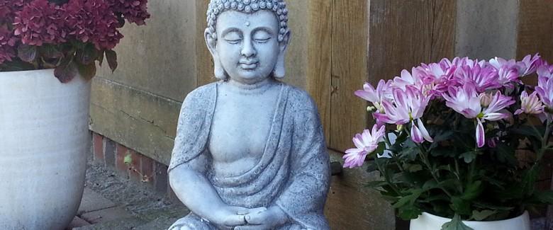 Natürlich meditieren - Du brauchst nichts tun, alles geschieht von alleine