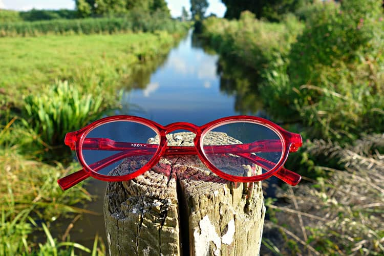 Brille auf Rundholz in Naturlandschaft
